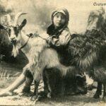 MONEGO, Pradel, 1° marzo 1909. La grande valanga